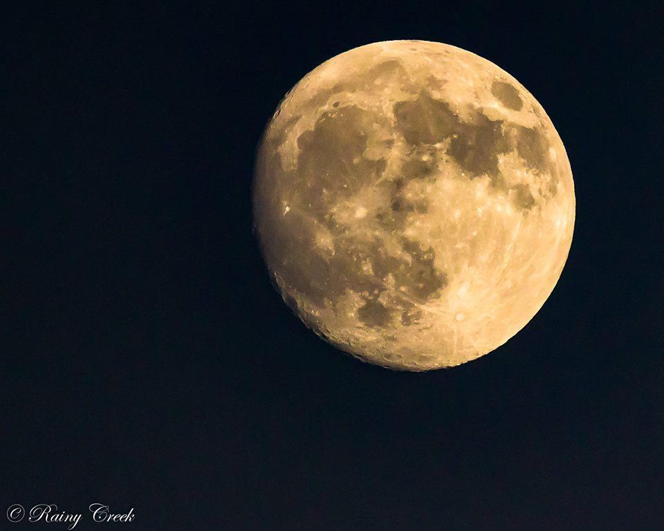 Full moon in a dark night sky